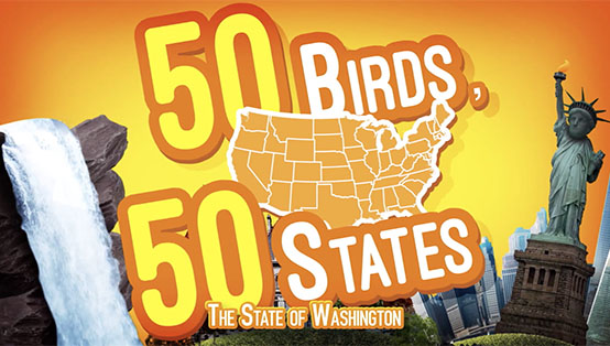 National Geographic Kids: 50 Birds 50 States